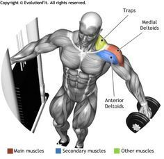 SHOULDERS -  DUMBBELL LEANING LATERAL RAISES