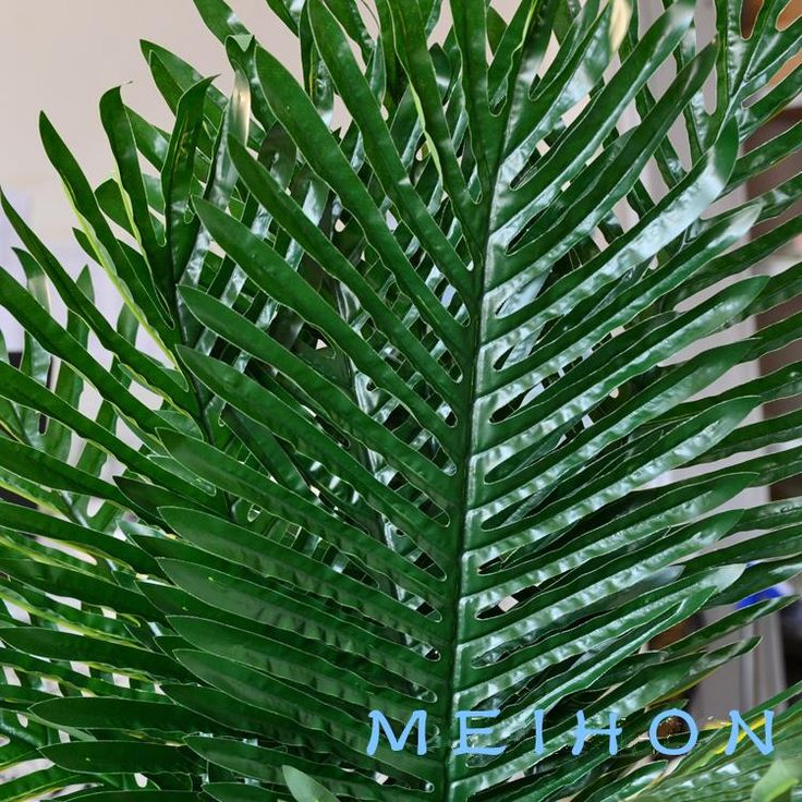 Cheap plants artificial, Buy Quality decorative artificial plants directly from China plant decor Suppliers: Artificial plant wedding decoration Simulation of leaf-tailed Palm leaf fantail of  Decoration fake flowers material