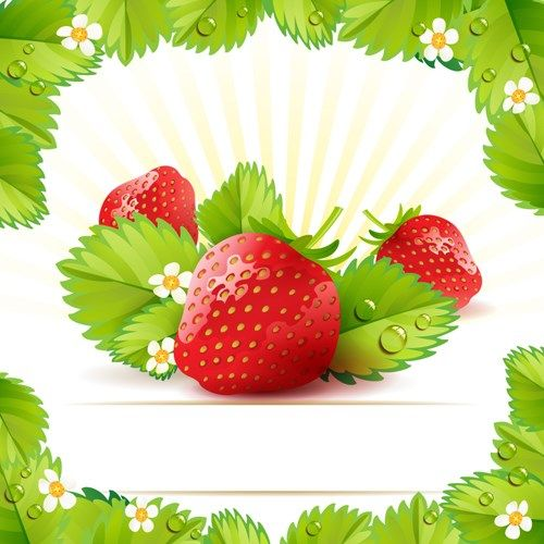FACEGFX Fresh Strawberry vector 03