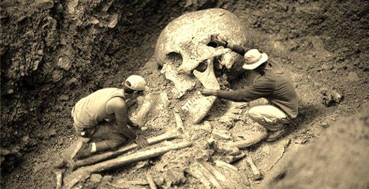 Nefilimii cei căzuţi, uriaşii- scheletele lor nu sunt expuse in muzee iar istoria lor lipseste din cartile de istorie