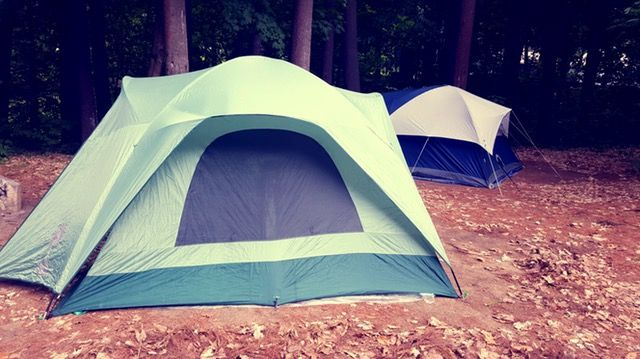 Mold And Mildew – Tent Care And Cleaning Tips | Equip And Camp
