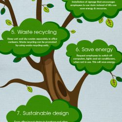Businesses can reduce their carbon footprints by transforming their offices into green workplaces.