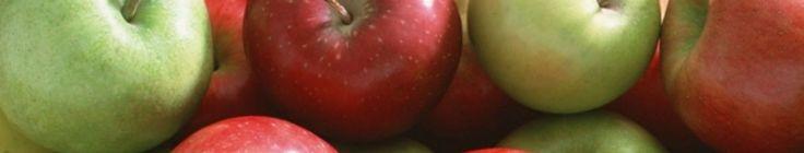 Beef Cheeks Braised in Red Wine | Rachel's Kitchen NZ