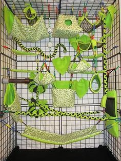 how to make cage look like a jungle - Google Search