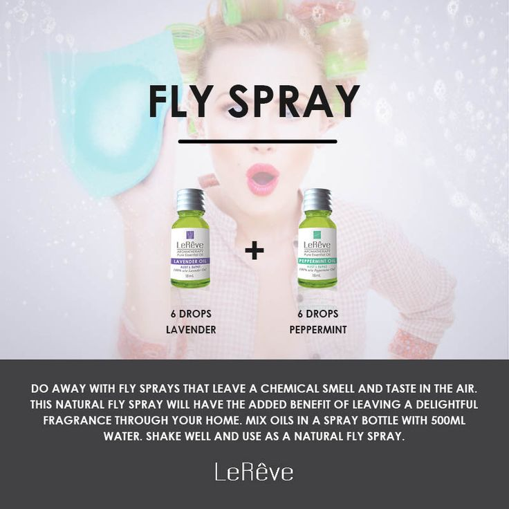 Fly Spray Aromatherapy Recipe - Do away with fly sprays that leave a chemical smell and taste in the air. This natural fly spray will have the added benefit of leaving a delightful fragrance through your home.  Mix oils in a spray bottle with 500mL water. Shake well and use as a natural fly spray. Lavender 6, Peppermint 6