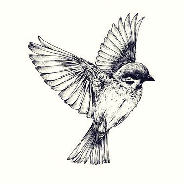 Realistic Sparrow Tattoo Design