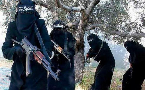 Volgens De Telegraaf is de Nationale Terrorismelijst van het ministerie van Buitenlandse Zaken uitgebreid met negen personen, waarvan zes vrouwen. Vrouwen vormen nog altijd een kleine minderheid, maar spelen volgens minister Koenders een belangrijke rol binnen IS.