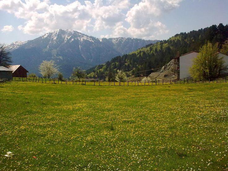 ΣΑΜΑΡΙΝΑ : Το πιο ορεινό χωριό των Βαλκανίων βρίσκεται στην Ελλάδα - sfika