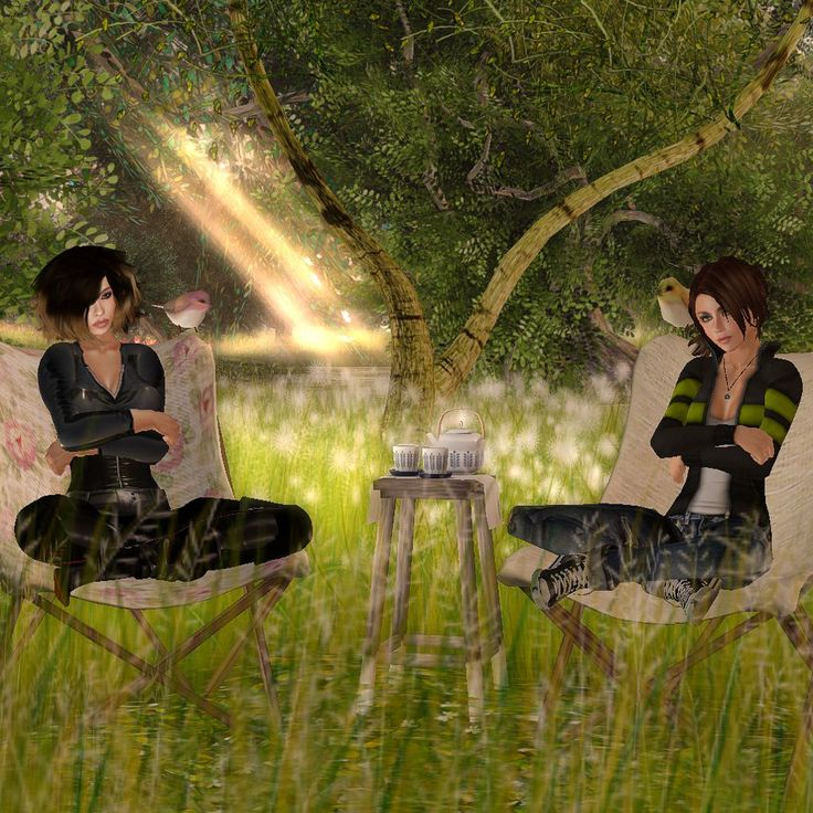 Meeting in Forest