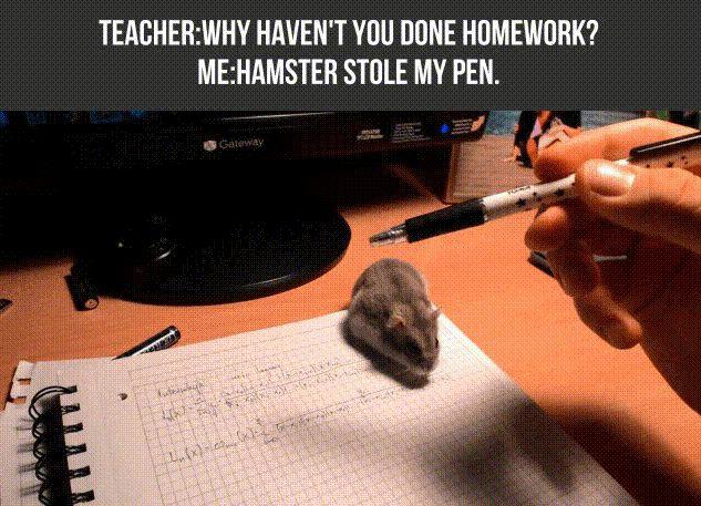 Wieso ich meine Hausaufgaben nicht machen konnte