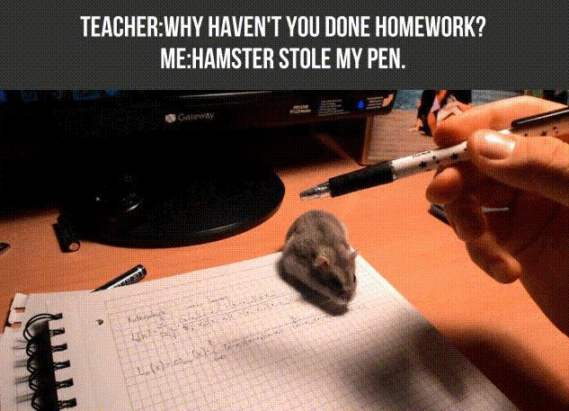 Hahah no but once my cat actually did eat my homework and at the time I was scared of cats so couldn't do anything and my teacher didn't believe me