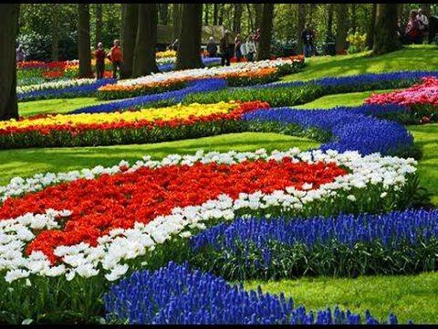 Keukenhof - Holland. Кёкенхоф - цветочный парк