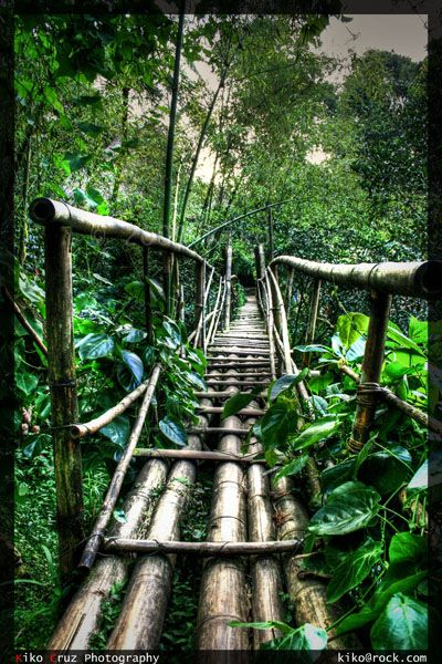 Bamboo Bridge in Tam-Awan Village, Baguio City