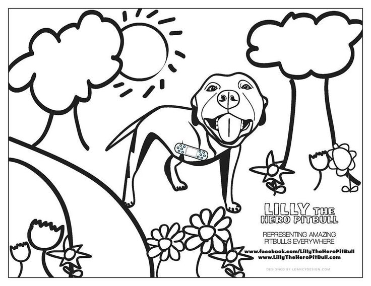 pitbull coloring pages - photo#26
