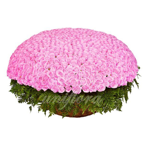 Королевский букет для настоящих королев, Вашего сердца. http://uniflora.com.ua/bouquet/buket-iz-1001-rozovoj-rozy-akva-ukr.html