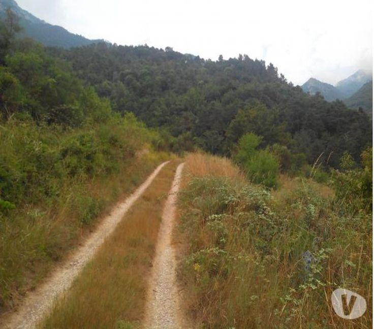 Magnifique terrain de 6.3 ha à Sospel Sospel - 06380 - Terrain a vendre Sospel - 06380 avec Vivastreet