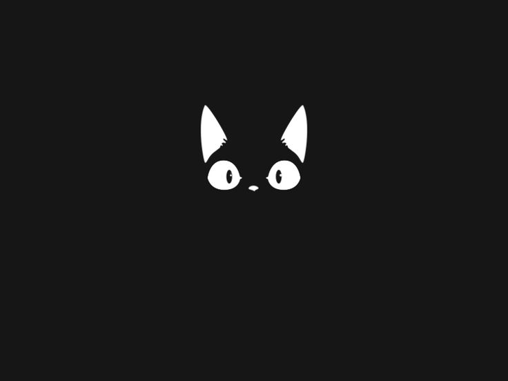 AA †☾ — weallheartonedirection: Black cat
