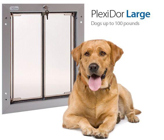 plexidor saloon style acrylic panel dog door comes in door wall electronic