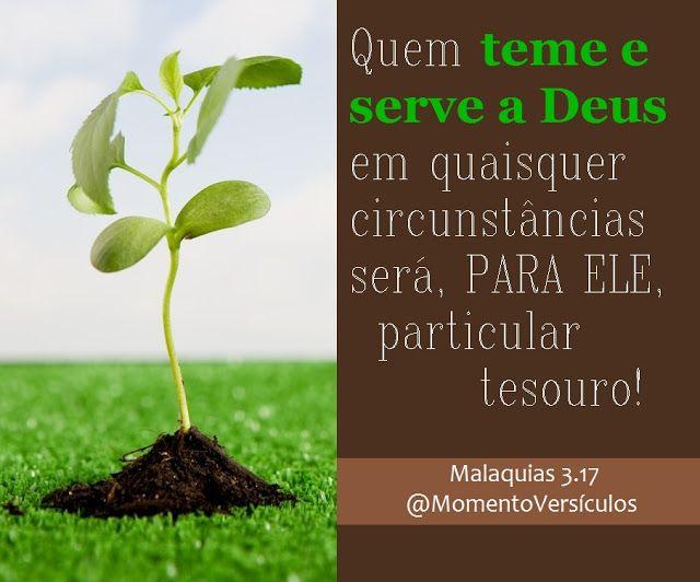 Momento Versículos: Particular tesouro de Deus  (Malaquias 3.17)