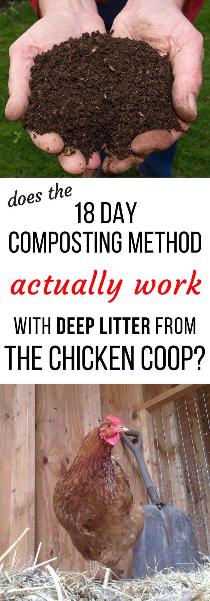 You've heard of the 18 day composting method - but does it ACTUALLY work with deep little cleaned out of the chicken coop? Here's what I found out when I tried it...