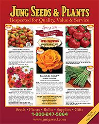 29 Best Images About Seed Catalogs On Pinterest Parks Tomato Seeds And Vegetables