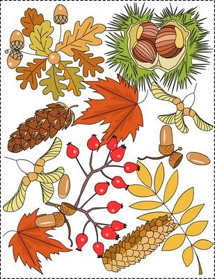 Autumn coloring pages | story words pics