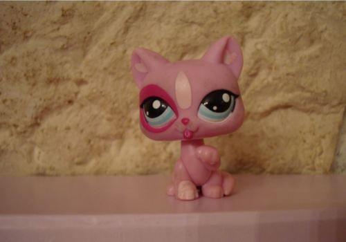 petshop-littlest-petshop-Lps-chat-cat-chartreux-2525-2525