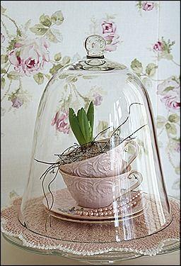 mooie kop en schotel met bloem onder een glazen stolp, geplaatst op een taartplateau