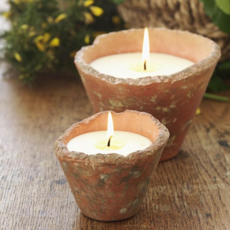 40 best pomponette leicester shop images on pinterest leicester rustic st eval candle pots we love the wild gorse fragrance it reminds us junglespirit Image collections