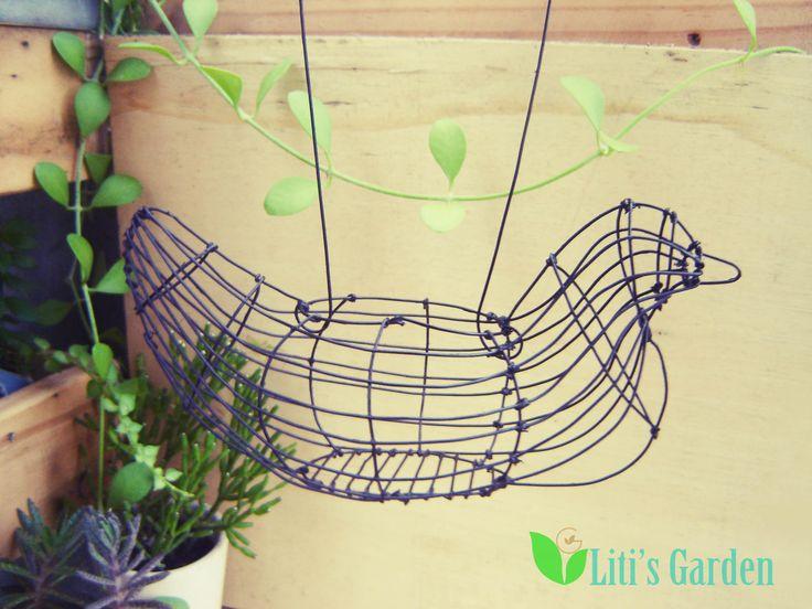 peace bird cage
