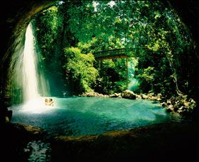 buderim falls, australia - go bush walking in the beautiful rainforests of Queensland! #airnzsunshine