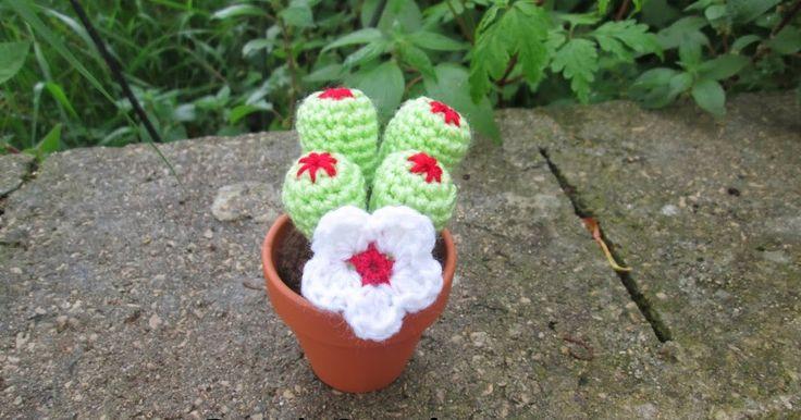 Vi presento il 3 cactus dell'evento aprile/maggio 2014 del gruppo progetti uncinettosi           Occorrente :   Lana verde - bianca - ross...