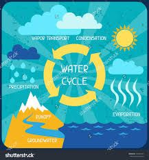 Image result for rainwater harvesting posters