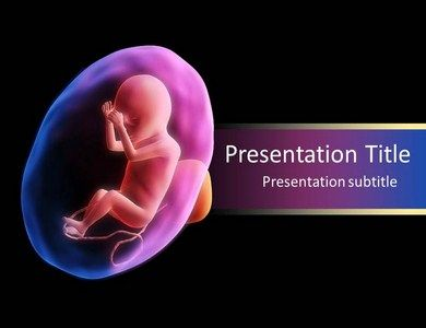 Download Fetus Development Powerpoint Template