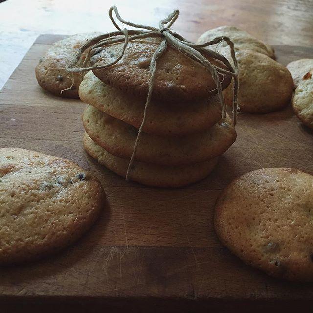 Vegan chocolate chip cookies fresh out of the oven. Vegan chocolate chip cookies fresh out of the oven. #vegan #chocolatechipcookies #cookies #veganfoodshare #veganfood #veganlife #foodporn #veganfoodporn #veganism #veganfood #veganforlife #veganistisch #koekjes #vegans #vegansofig #vegansofinstagram #veganpower #vegancommunity #veganlifestyle #veganeats #whatveganseat  #veganlove #veganshare #veganporn #veganbaking #bakedgoods #veganbaker #freshoutoftheoven #veganchef #vegancooking…