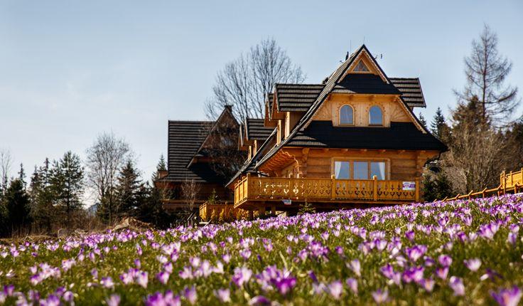 Dom Michałówka Zakopane House - tatrytop.pl #Zakopane