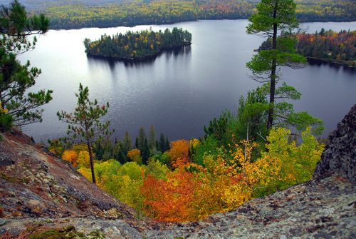 Fall Colours in Algonquin.