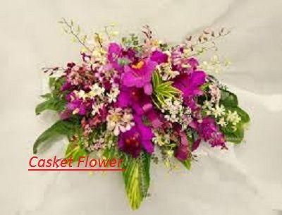 http://funeralcasketflowers.angelfire.com/  Casket Spray Flowers  Casket Sprays,Casket Flowers,Casket Spray,Flowers For Casket,Funeral Casket Sprays,Funeral Casket Flowers,Casket Flower Arrangements,Casket Spray Flower Arrangements,Casket Sprays For Funerals,Casket Sprays For Men,Cheap Casket Sprays,Casket Flowers Arrangements,Casket Arrangements,Casket Blanket,Casket Floral Arrangements,Casket Sprays For Mother