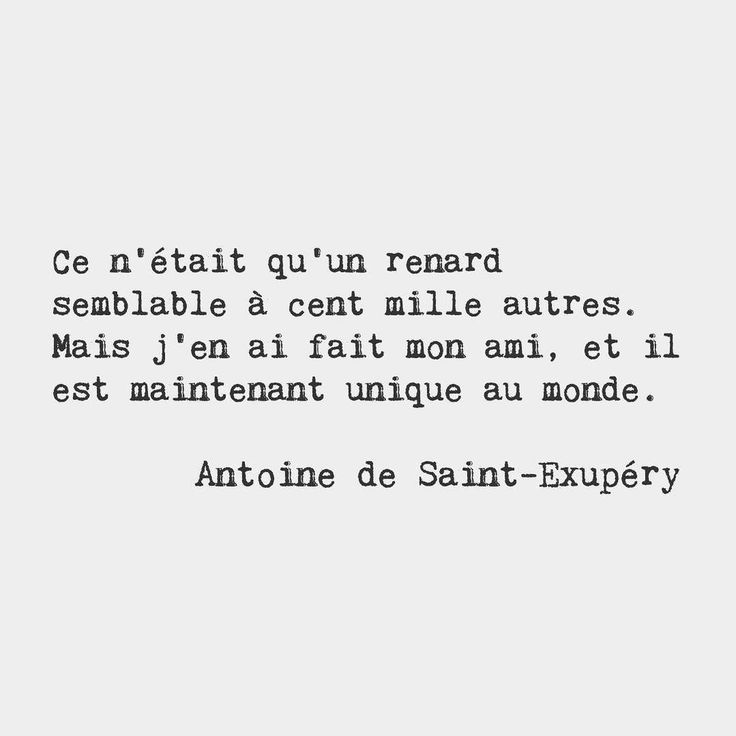 He was only a fox like a hundred thousand other foxes. But I have made him my friend, and now he is unique in all the world. — Antoine de Saint-Exupéry, French writer