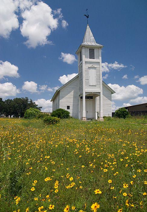 church in New Braunfels, TexasWild Flower, Beautiful Church, New Braunfels, Old Church, White Church, Usa Travel,  Church Buildings, Yellow Flower, Country Churches