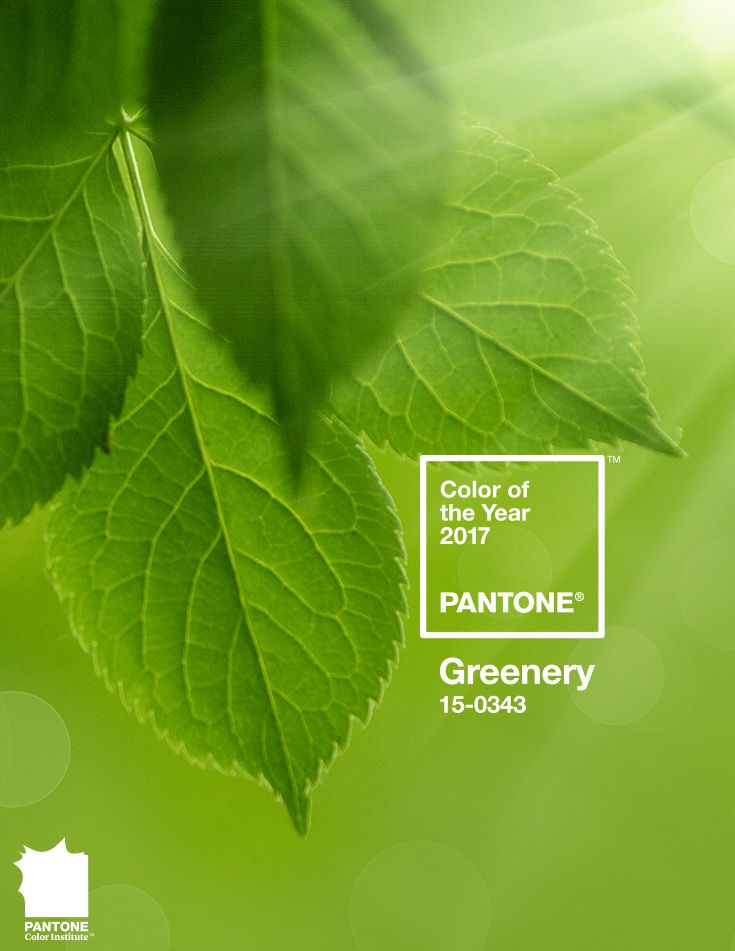 The Pantone #ColoroftheYear for 2017 is #Greenery. A refreshing and revitalizing shade, Greenery is symbolic of new beginnings.