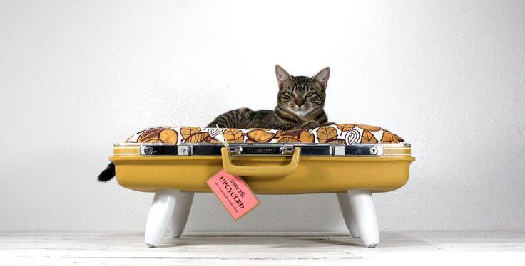 Camas recicladas para tus mascotas. ¡Hazlo tú mismo! :) #DIY