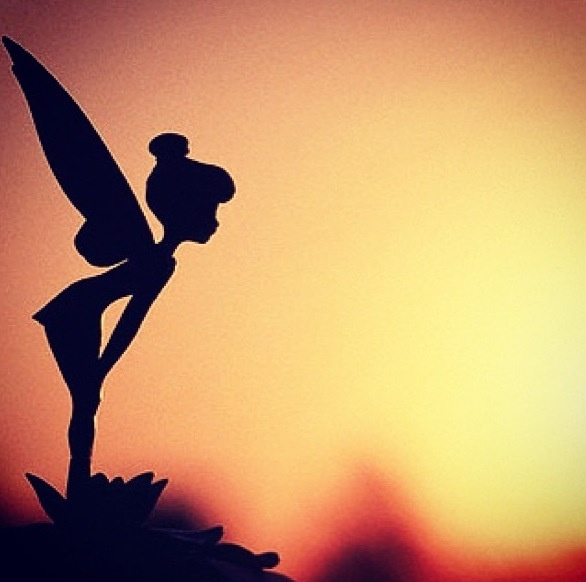 Tinkerbell sunset #disney