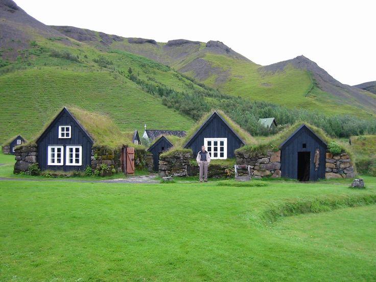 Skogar houses