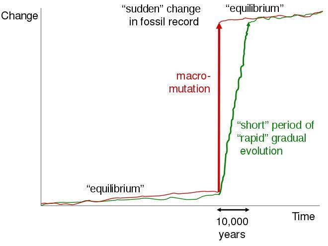 Hash calculator bitcoin chart