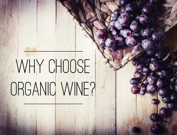 Why choose organic wine? Healthy? Wine, organic, vino, red wine, delicious, vineyard