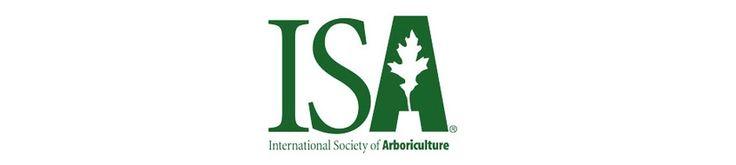 Certified Arborist South Jersey