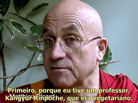 resumindo o vegetarianismo em 6minutos. tão óbvio!!!