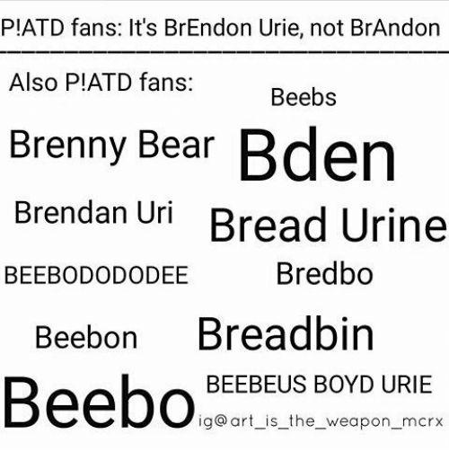 Image result for brendon urie memes