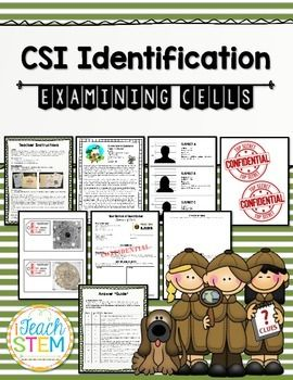 """*TOP SELLING ITEM*In this lesson, students will be given a mystery to solve, based on their knowledge of cells. To solve the mystery, they need to know the major differences between plant and animal cells. Students apply their knowledge to a """"real-life"""" scenario in which they must classify cells as plant or animal."""